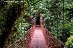 Monteverde Reserve, Costa Rica
